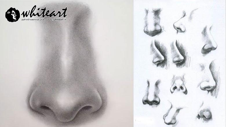 اصول طراحی بینی و لب در طراحی از چهره