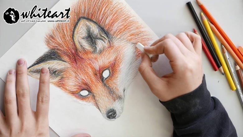 تکنیک های طلایی برای نقاشی با مداد رنگی